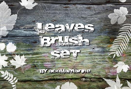 19 Free Photoshop Leaf Brush Sets 15
