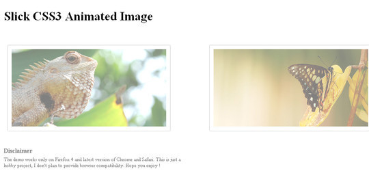 12 Free And Amazing CSS3 Image Hover Effects For Downloads 5