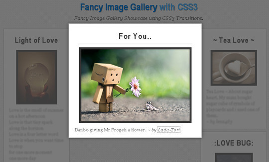 12 Free And Amazing CSS3 Image Hover Effects For Downloads 6