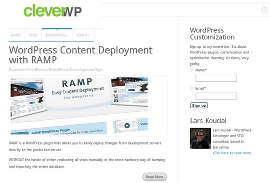 45 Excellent Professional Resources For Learning WordPress Development 33