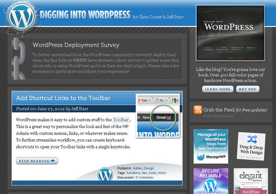 45 Excellent Professional Resources For Learning WordPress Development 12
