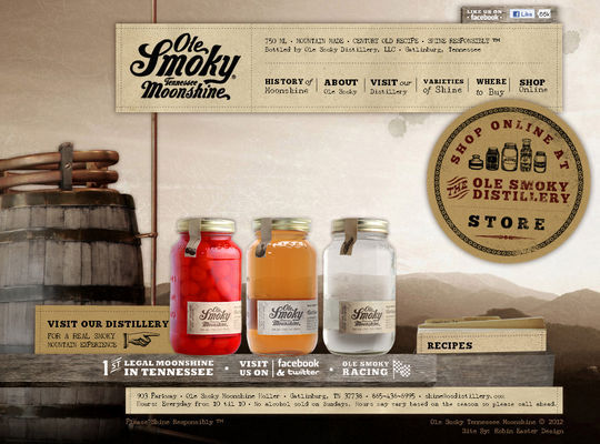 Retro And Vintage: 44 Classy Examples Of Web Designs 19