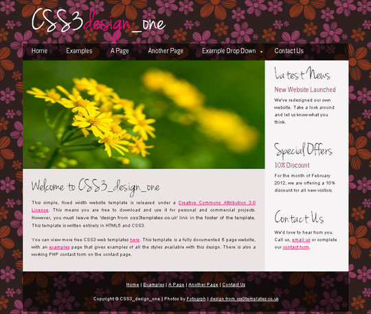 A Beautiful Collection Of Free HTML5 And CSS3 Templates 3