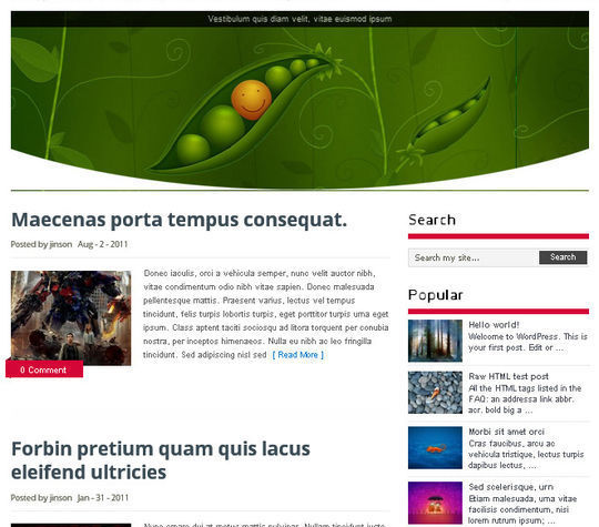 40 Magazine Style Wordpress Themes For Free Download 33
