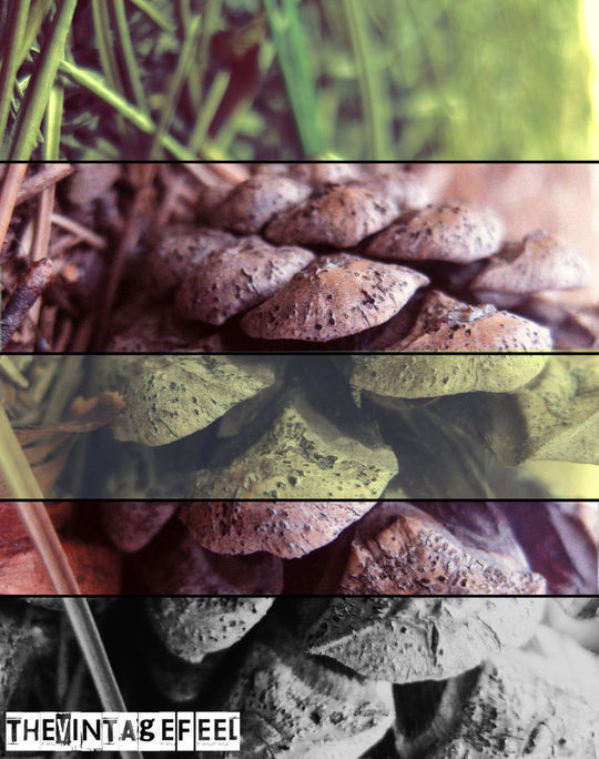 40 Time Saving Free Photoshop Actions For Vintage Effect 13