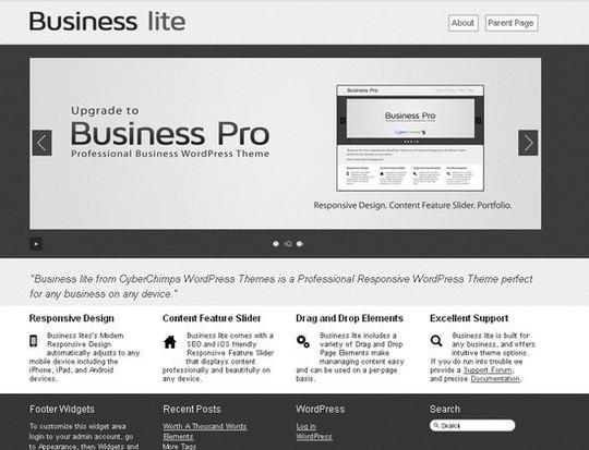 Showcase Of Powerful Free WordPress Business Themes 13