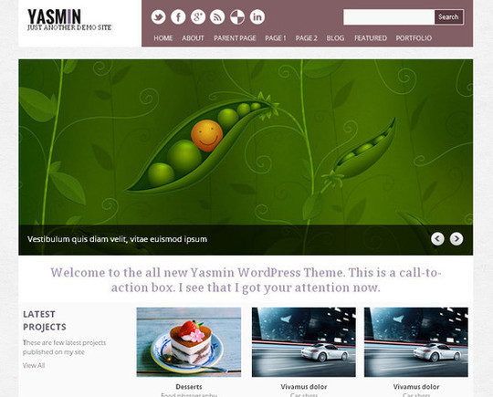Showcase Of Powerful Free WordPress Business Themes 17