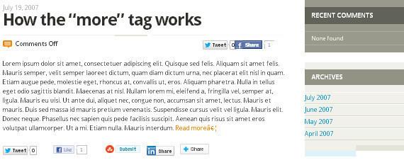 10 Best Free 3 Column WordPress Themes 15