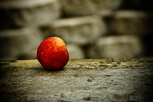 44 Outstanding Examples Of Still Life Photography 5