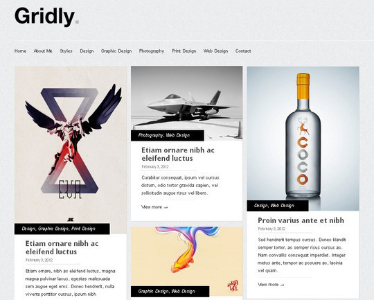 Collection of Free And Premium WordPress Themes With Grid Layouts 24