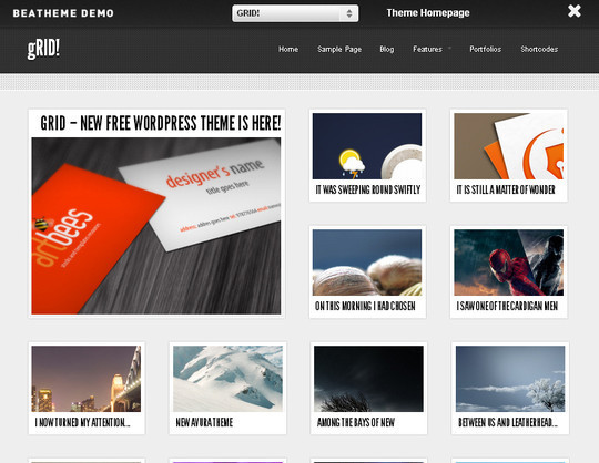Collection of Free And Premium WordPress Themes With Grid Layouts 3