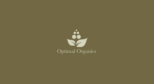 Collection of Inspiring Organic Logo Designs 5