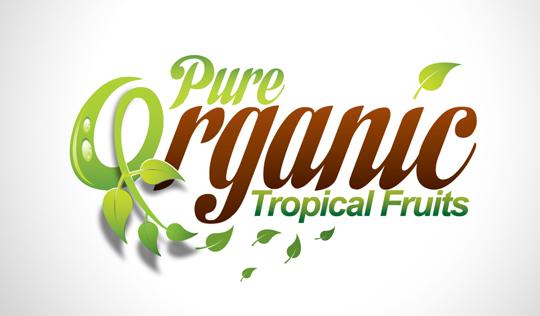 Collection of Inspiring Organic Logo Designs 33