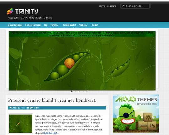 44 Powerful Yet Free Wordpress Portfolio Themes 21