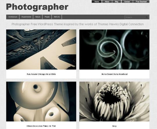 44 Powerful Yet Free Wordpress Portfolio Themes 28