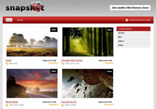 44 Powerful Yet Free Wordpress Portfolio Themes 40