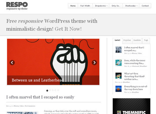 15 Free Minimal And Responsive WordPress Themes 14
