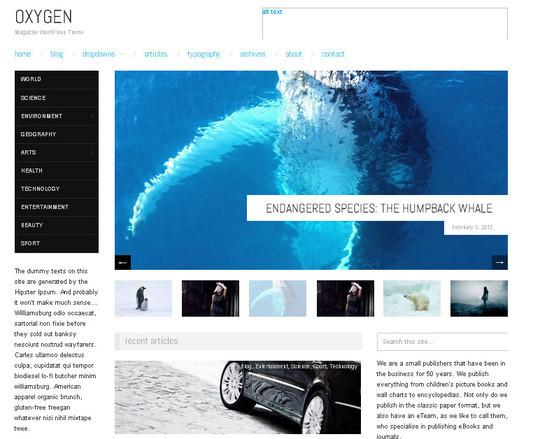 15 Free Minimal And Responsive WordPress Themes 15