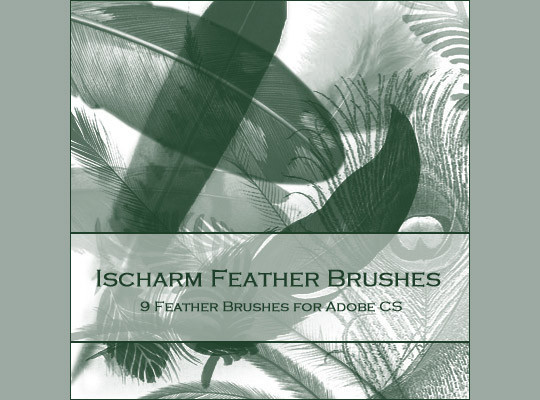 24 Free Photoshop Feather Brushes For Download 15