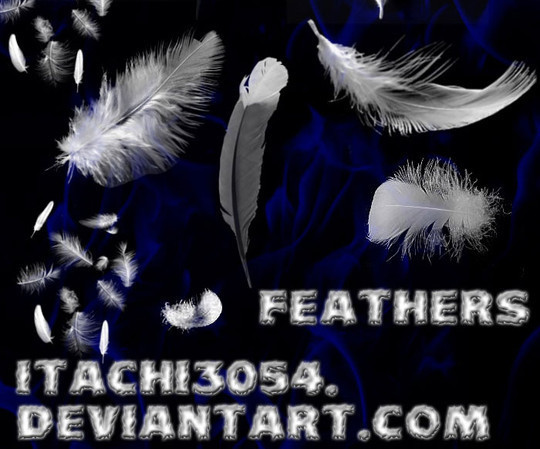 24 Free Photoshop Feather Brushes For Download 17
