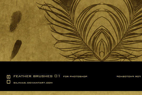 24 Free Photoshop Feather Brushes For Download 18