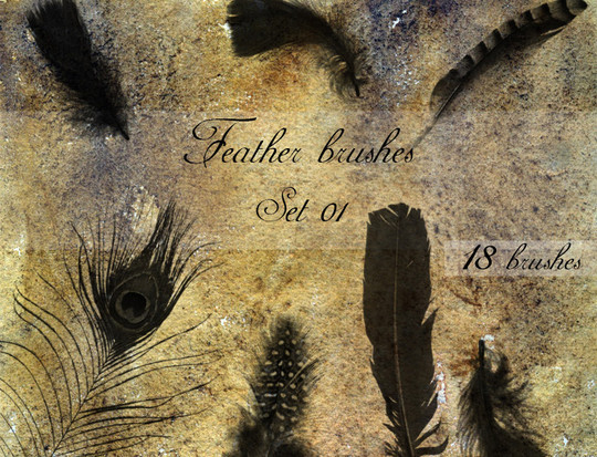 24 Free Photoshop Feather Brushes For Download 3