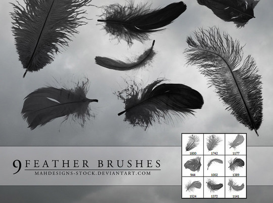 24 Free Photoshop Feather Brushes For Download 1