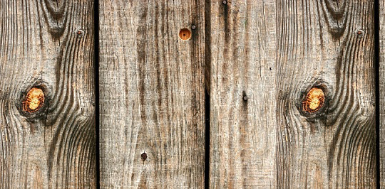 19 Useful And Realistic Wood Textures 5