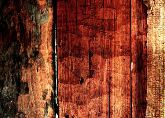 19 Useful And Realistic Wood Textures 19