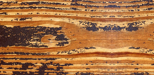 19 Useful And Realistic Wood Textures 6
