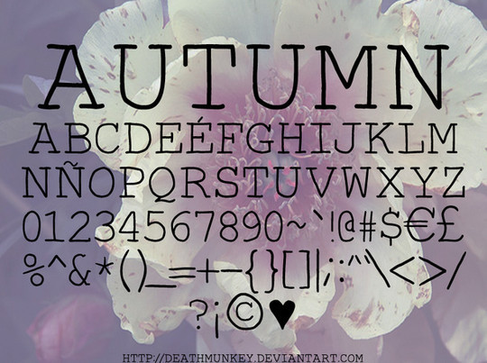 45 New High-Quality Free Fonts For Designers 11