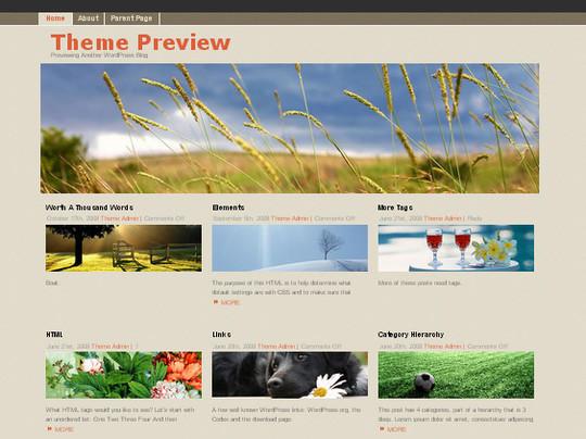 40 Beautiful 3 Column WordPress Themes For Free Download 28