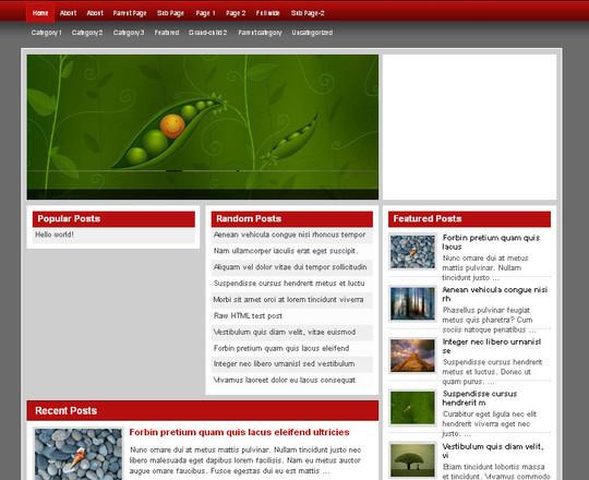 40 Beautiful 3 Column WordPress Themes For Free Download 32
