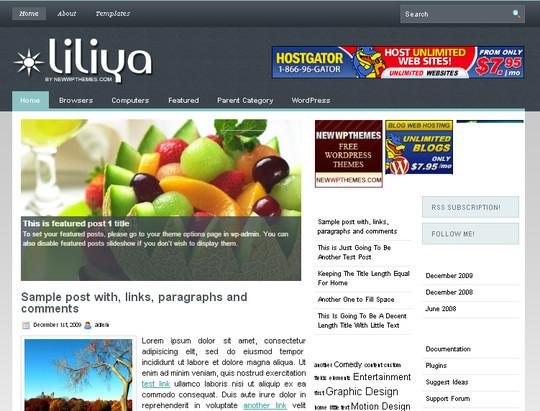 40 Beautiful 3 Column WordPress Themes For Free Download 35