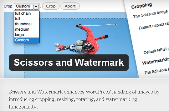 12 WordPress Plugins That Automatically Watermark Images on Your Blog 1