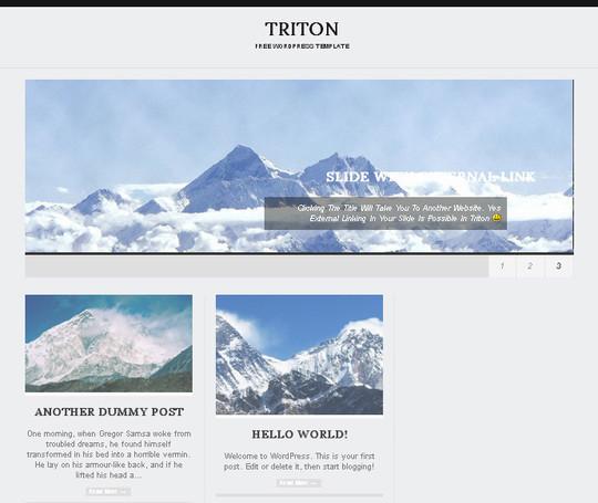 44 Premium Yet Free Wordpress Themes For Your Blog 28