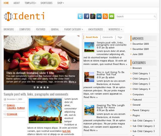 44 Premium Yet Free Wordpress Themes For Your Blog 12