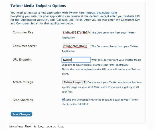 40 Best Twitter Plugins For WordPress Users 21