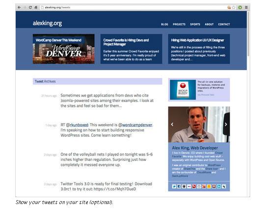 40 Best Twitter Plugins For WordPress Users 37