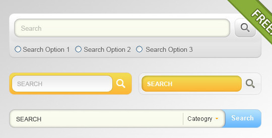 45 Search Box PSD Designs For Free Download 29