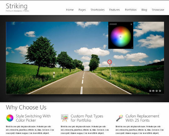 12 Free HTML5 And Responsive WordPress Themes 10