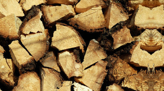 20 Free And High Resolution Log Textures 2
