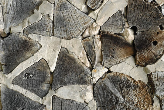 20 Free And High Resolution Log Textures 8