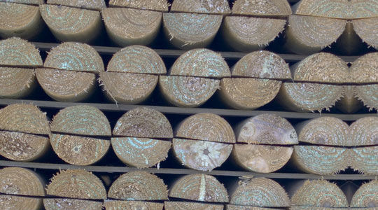 20 Free And High Resolution Log Textures 10