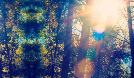 17 High Quality Lens Flare Textures 11