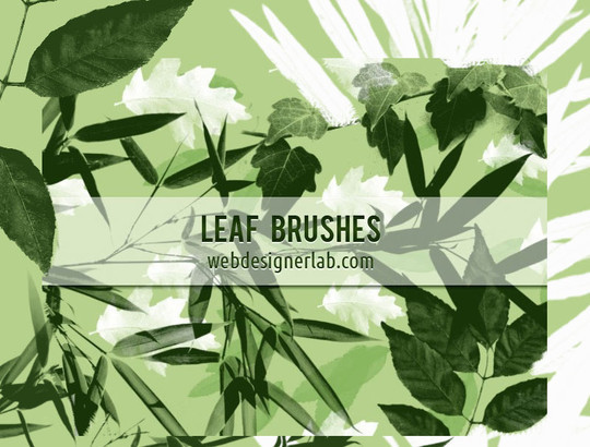 50 Outstanding Yet Free Photoshop Brush Packs For Your Designs 37