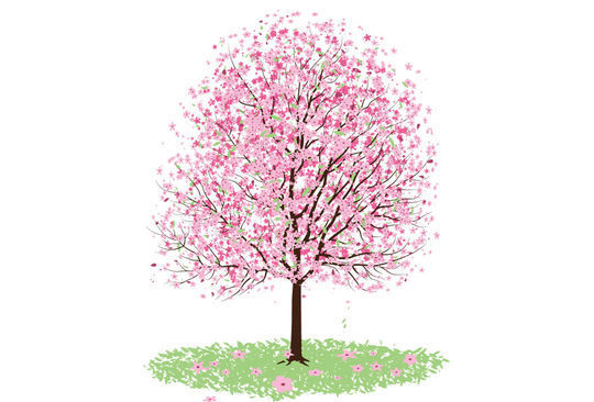 20 Beautiful Vector Trees And Leaves For Designers 4