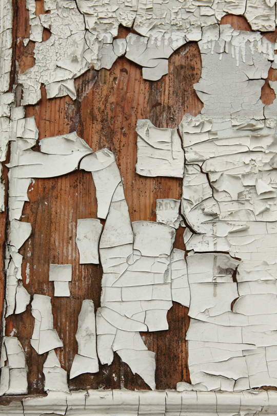 woodtextures