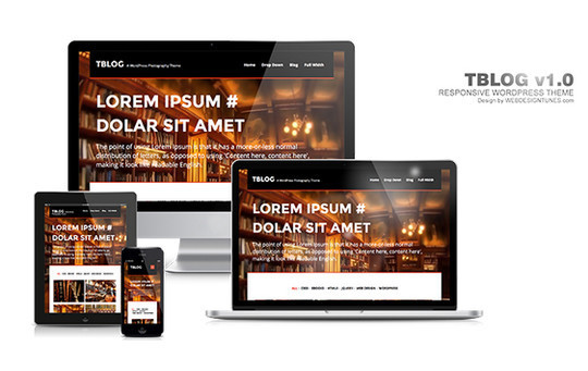 15 Free And Awesome Responsive WordPress Themes 23
