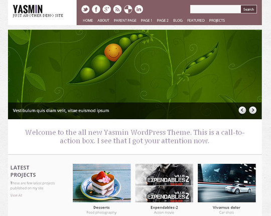15 Free And Awesome Responsive WordPress Themes 4